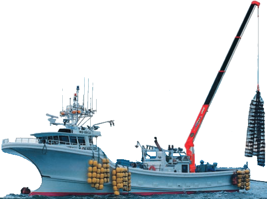 ocean_crane