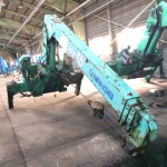 Nansei Crane  -53515272